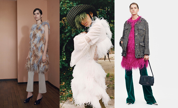 feather fever trend