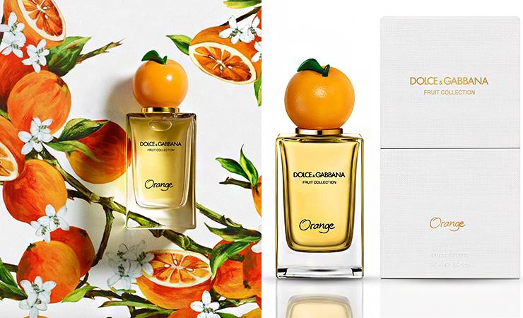 oragnge fragrance dolce gabbana